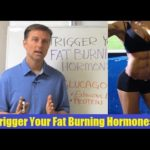 Great advice: Trigger Your Fat Burning Hormone: GLUCAGON
